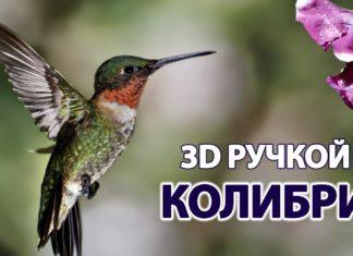 Колибри 3D ручкой